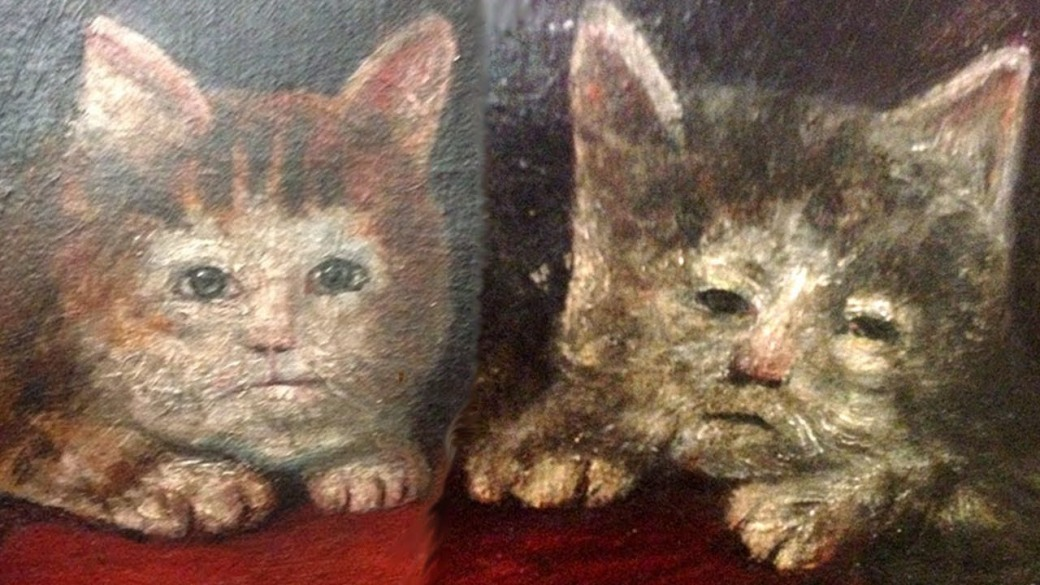 scary medieval cats